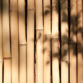 Paillotes et décorations en bambou